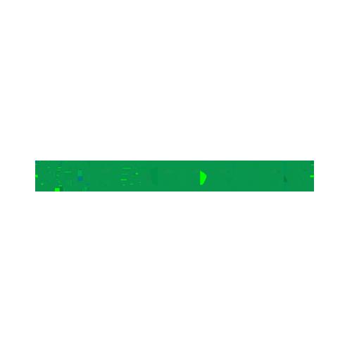 Referenz Schaeffler | EQS Group
