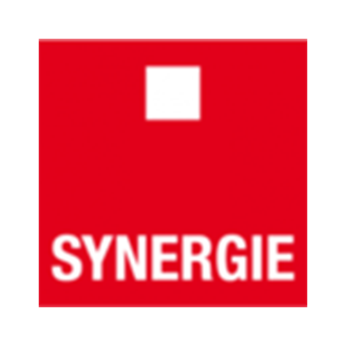 Reference Synergie | EQS Group