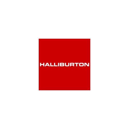 Reference Halliburton | EQS Group